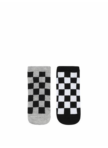 Colin's CL1053476_Q1.V1_MTC  Erkek Çorap Renkli